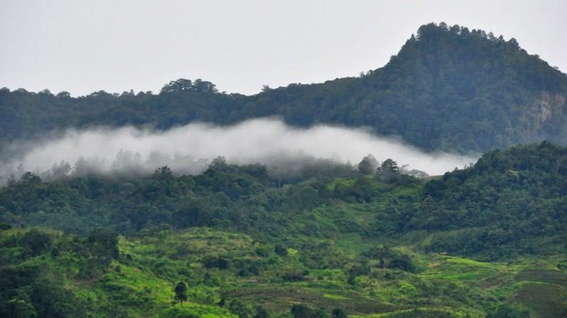 Núi Ngọc Linh