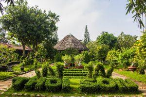 Chia sẻ kinh nghiệm du lịch cồn Thới Sơn Tiền Giang thumbnail