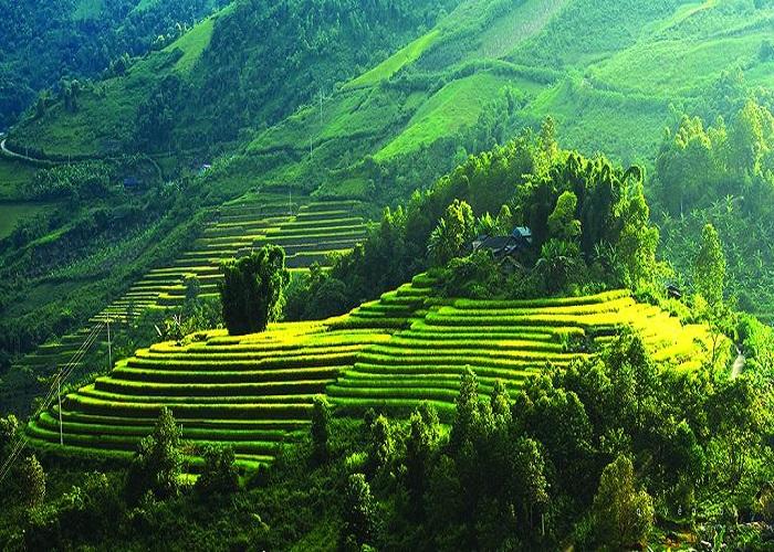 """Những địa điểm du lịch gần Hà Nội đẹp ngỡ ngàng, đẹp """"hút hồn"""", giá rẻ bèo nhèo post image"""