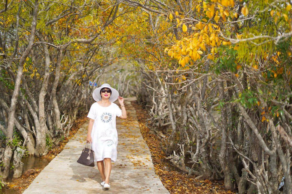 Rú Chá Huế mùa thay lá đẹp tựa như khu vườn cổ tích post image