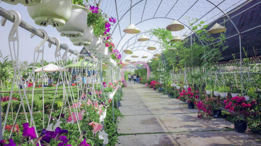 Cổng được treo các chậu với mỗi chậu là một loài hoa khác nhau