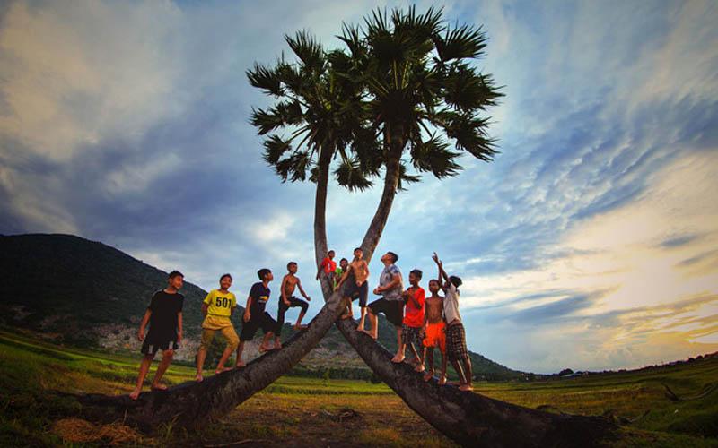 Bên canh cây thốt nốt là vẻ đẹp hồn nhiên trong sáng của người Tây Ninh khi đứng trước thiên nhiên huyền dịu
