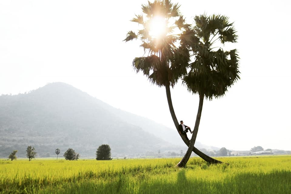 Check in tại cây thốt nốt Tây Ninh
