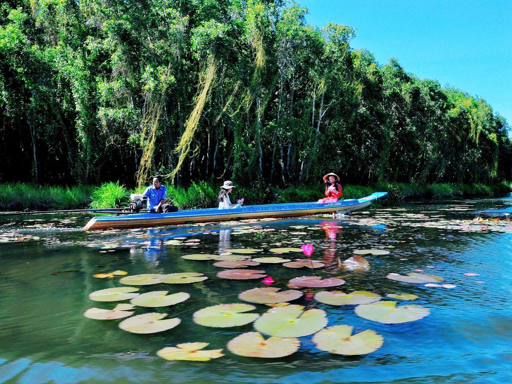 Hoa sen trôi bồng bềnh vào mùa nước nổi tại làng nổi Tân Lập.