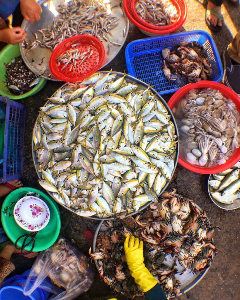 Các ghe tàu chở những giỏ đầy hải sản cập bến vào buổi sáng sớm. Đây là thời gian tốt nhất để lựa được những hải sản tươi ngon nhất.