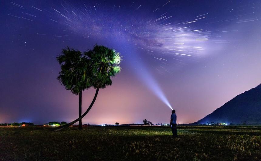 Ngắm sao đêm bên bộ đôi cây thốt nốt Tây Ninh