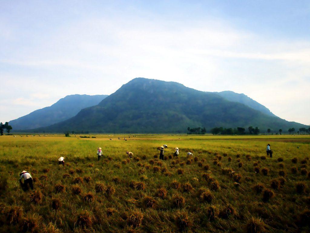 Núi Cấm An Giang.
