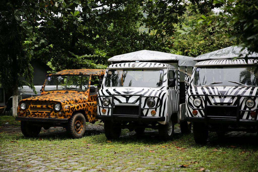 Tham quan rừng xanh Madagui bằng xe jeep.