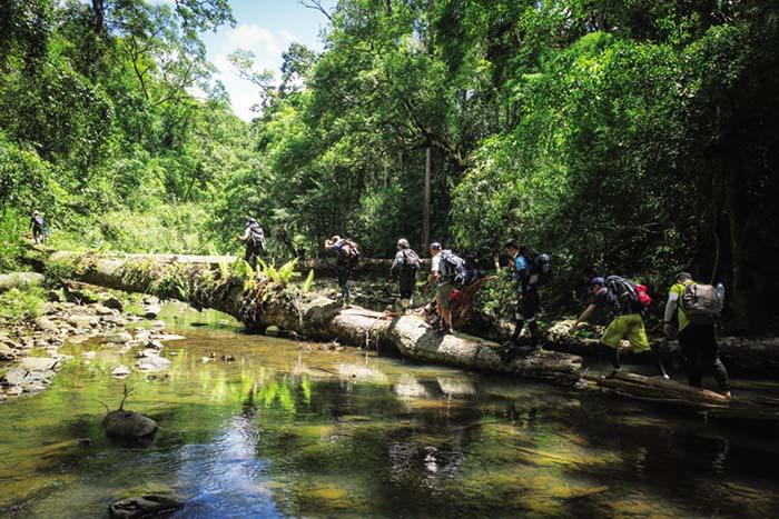 Một đoạn đường trekking trong rừng Bù Gia Mập